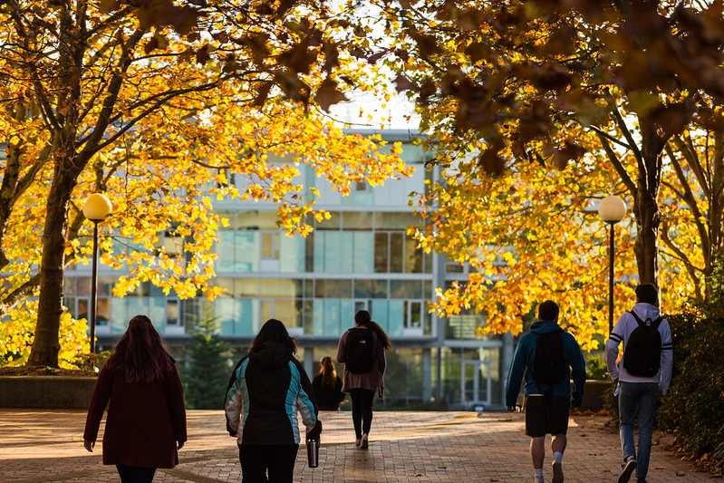 Students exploring campus in the fall
