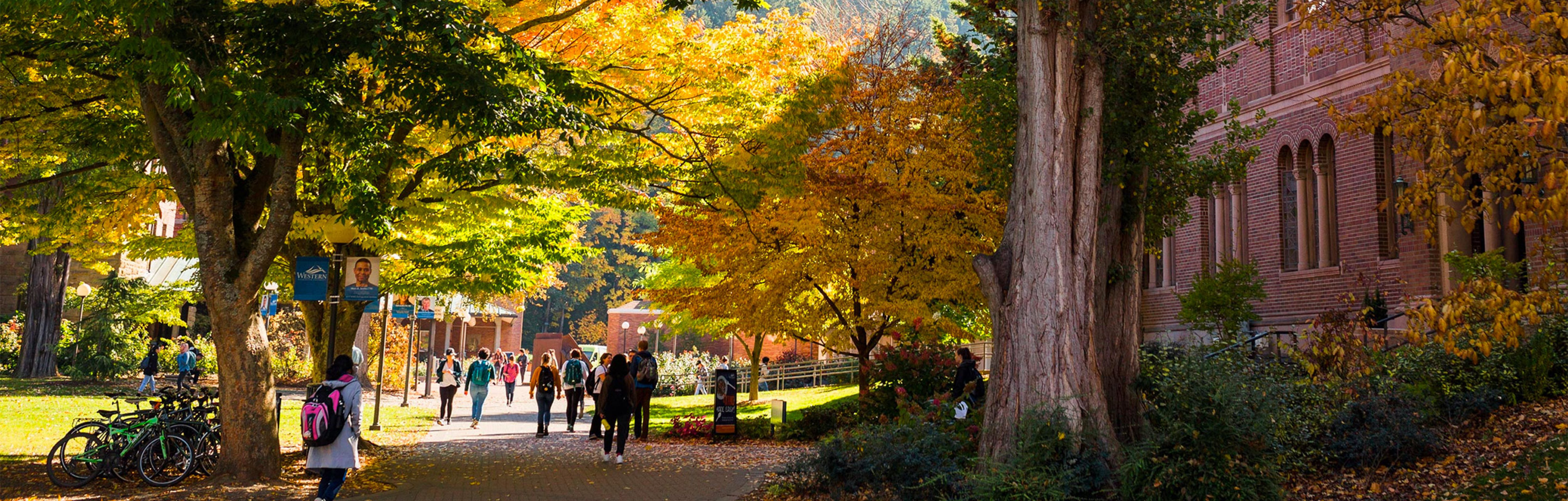 Trees leaves turning colors and students walking down the streets
