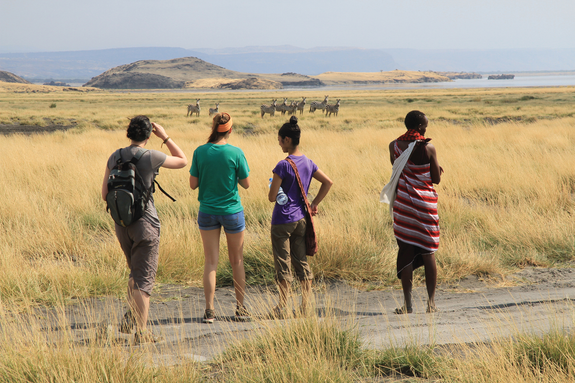 Three Western students standing in a expanse African plain with a local guide. Their backs are facing us as they gaze upon a group of Zebras in the distance.
