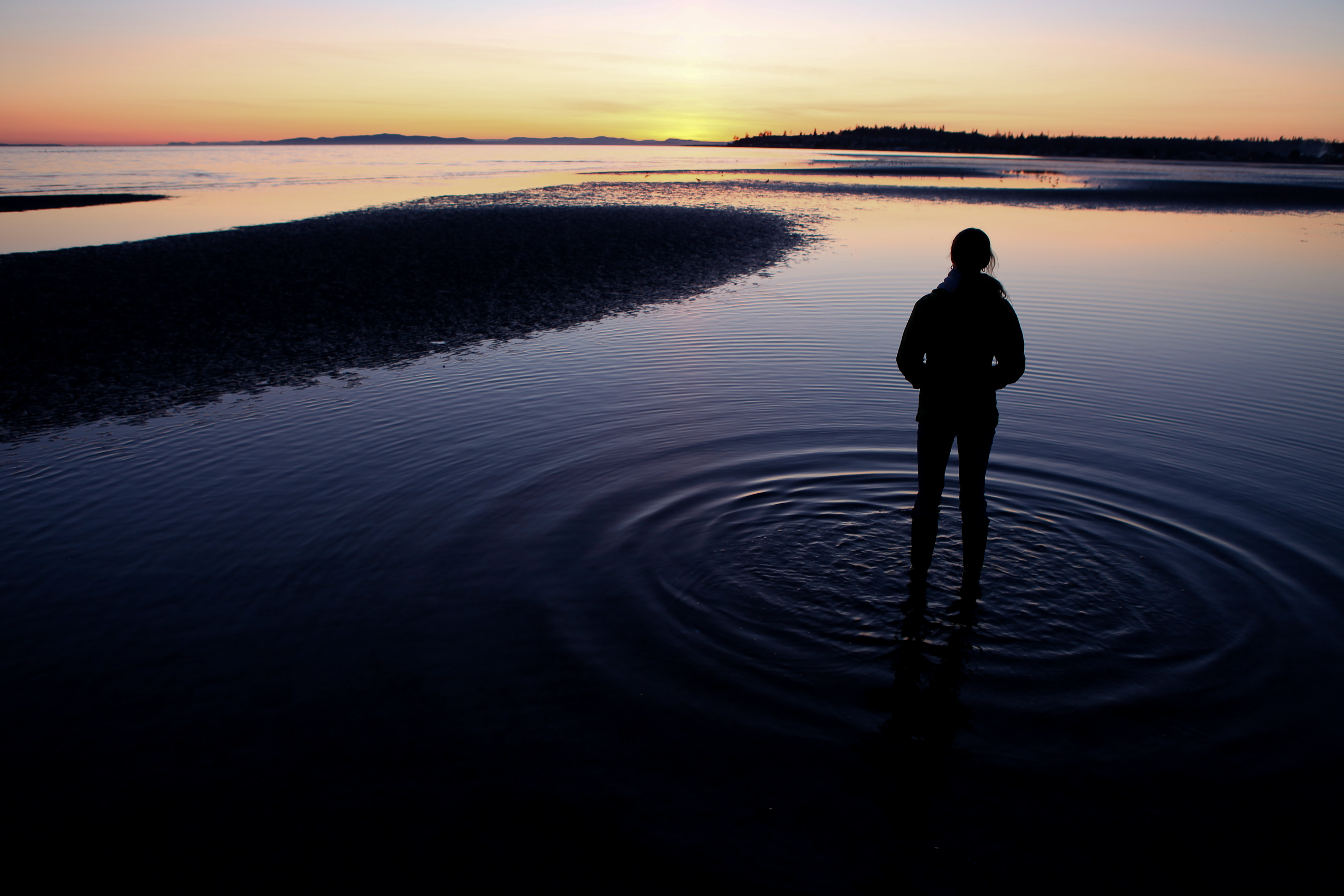 A person standing in Bellingham Bay at sunset