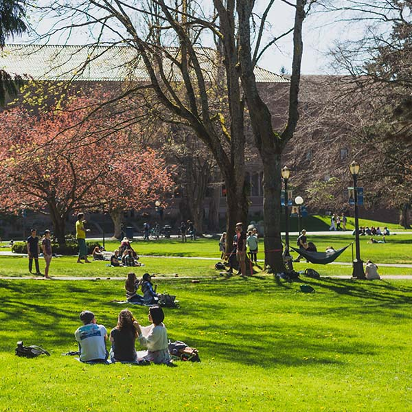 Students relaxing in the sun on Old Main's lawn. Cherry blossoms bloom in the background..