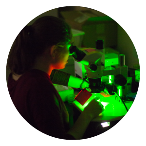 A person looks through a microscope in a dark-lit room